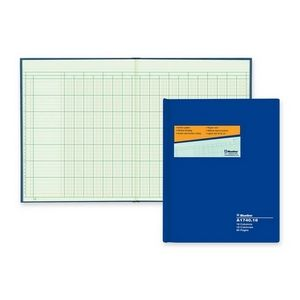 Accounting/Columnar/Record Books & Pads