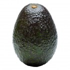 Hass Avocados 6 Pack